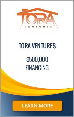 Tora Ventures